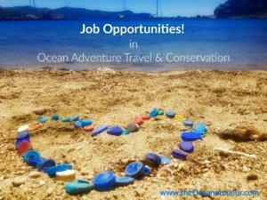 vacancy-adventure-travel-ocean-conservation